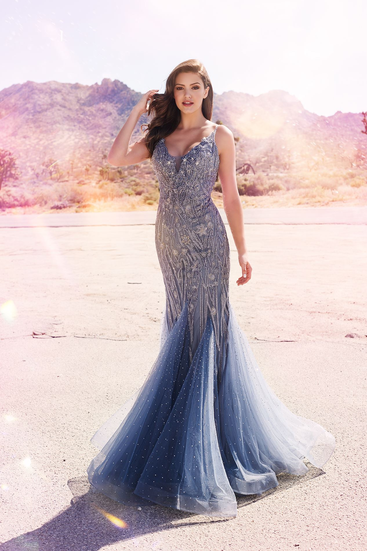Brunette model in long gray prom dress in desert